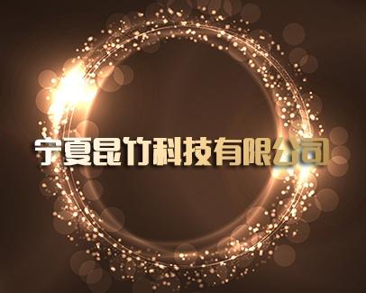 宁夏昆竹科技有限公司