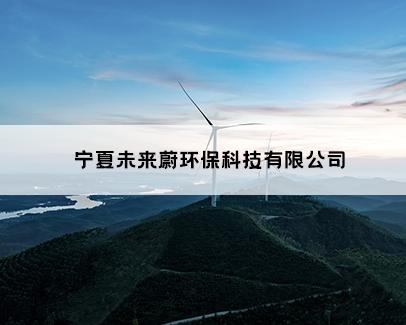 宁夏未来蔚环保科技有限公司